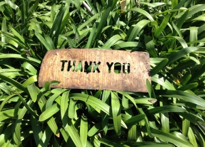 thank-you-the art of gratitude